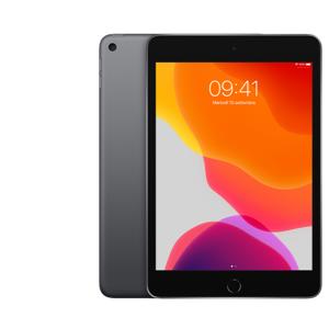 Apple iPad mini 5 64 GB Grigio siderale Wi-Fi grade A+