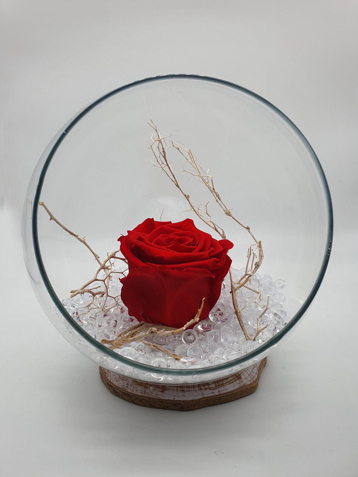 Ampolla Di Vetro Con Rosa Stabilizzata Pnt10008
