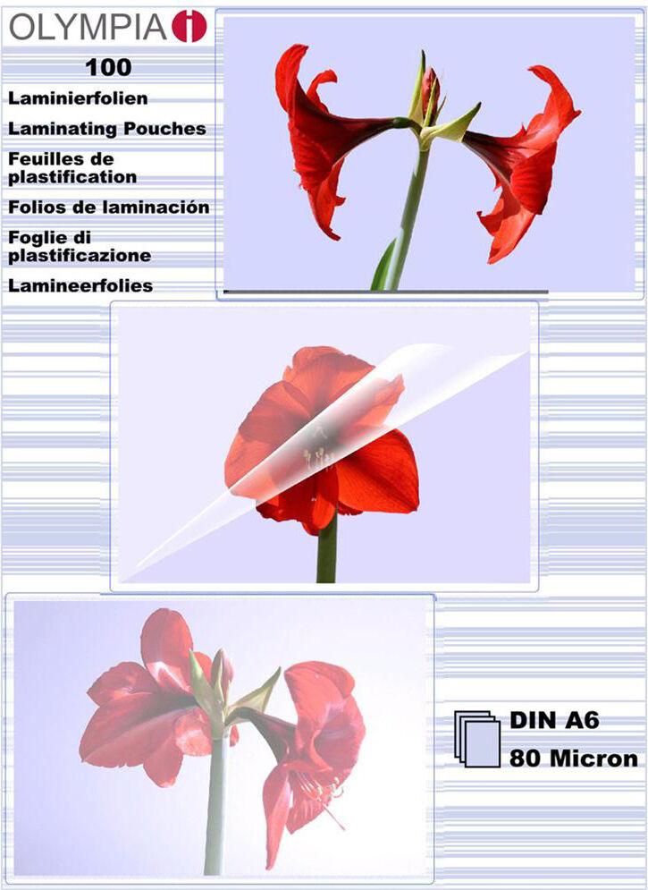 rgv Af-9168 Affilalama Per Coltelli Forbici - 9168