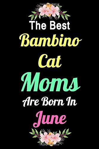 Cat Mama Diaries The Best  Bambino Cat Moms
