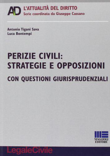 Luca Bontempi Perizie civili. Strategie e