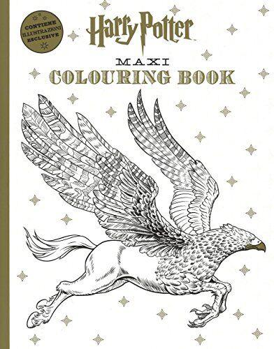 J. K. Rowling Harry Potter maxi colouring