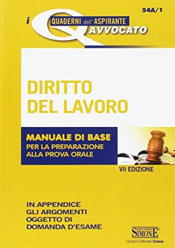 AA.VV. Diritto del lavoro. Manuale di base per