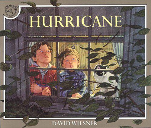 David Wiesner Hurricane ISBN:9780395629741
