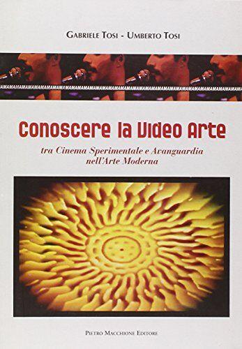 Gabriele Tosi Conoscere la video arte. Tra