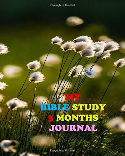 Liberty Rivera My Bible Study 3 Months