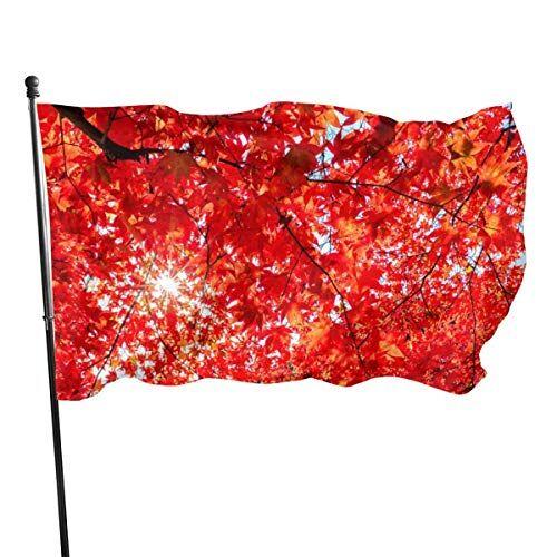 WLQP Giardino e Giardinaggio Decorazioni per Il Giardino Bandiere Shine Stars Flag 3 x 5 ft Outdoor Indoor Dormitory Room Decoration Banner Brass Grommets