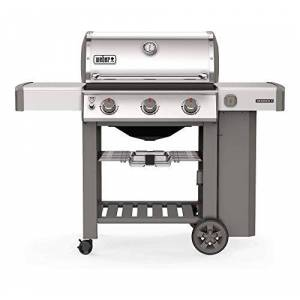 Weber Genesis 2 S-310