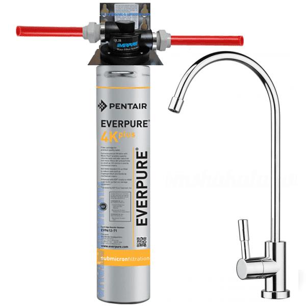 Depuratore Acqua Kit Everpure 4k Plus Con Testa Ql2b E E Rubinetto Kit Everpure 4k Plus Con Testa Ql2b E Rubinetto