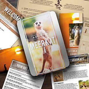 Gift Republic Ltd Regalo Repubblica Ltd GR 100030 - Giardino di sculture di Animali