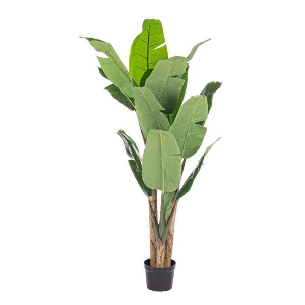 bizzotto pianta banano c-vaso 16 foglie h170 0172429