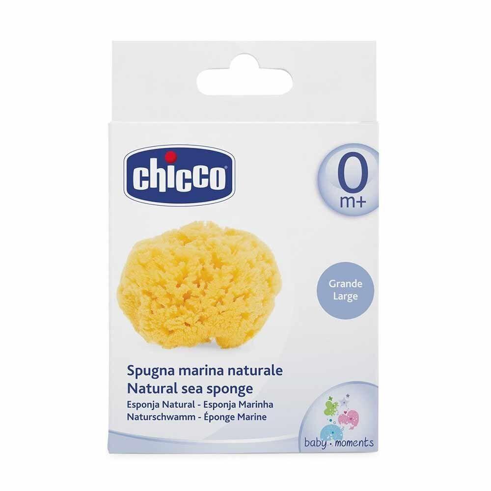 Chicco Spugna Marina Formato Grande 0M+