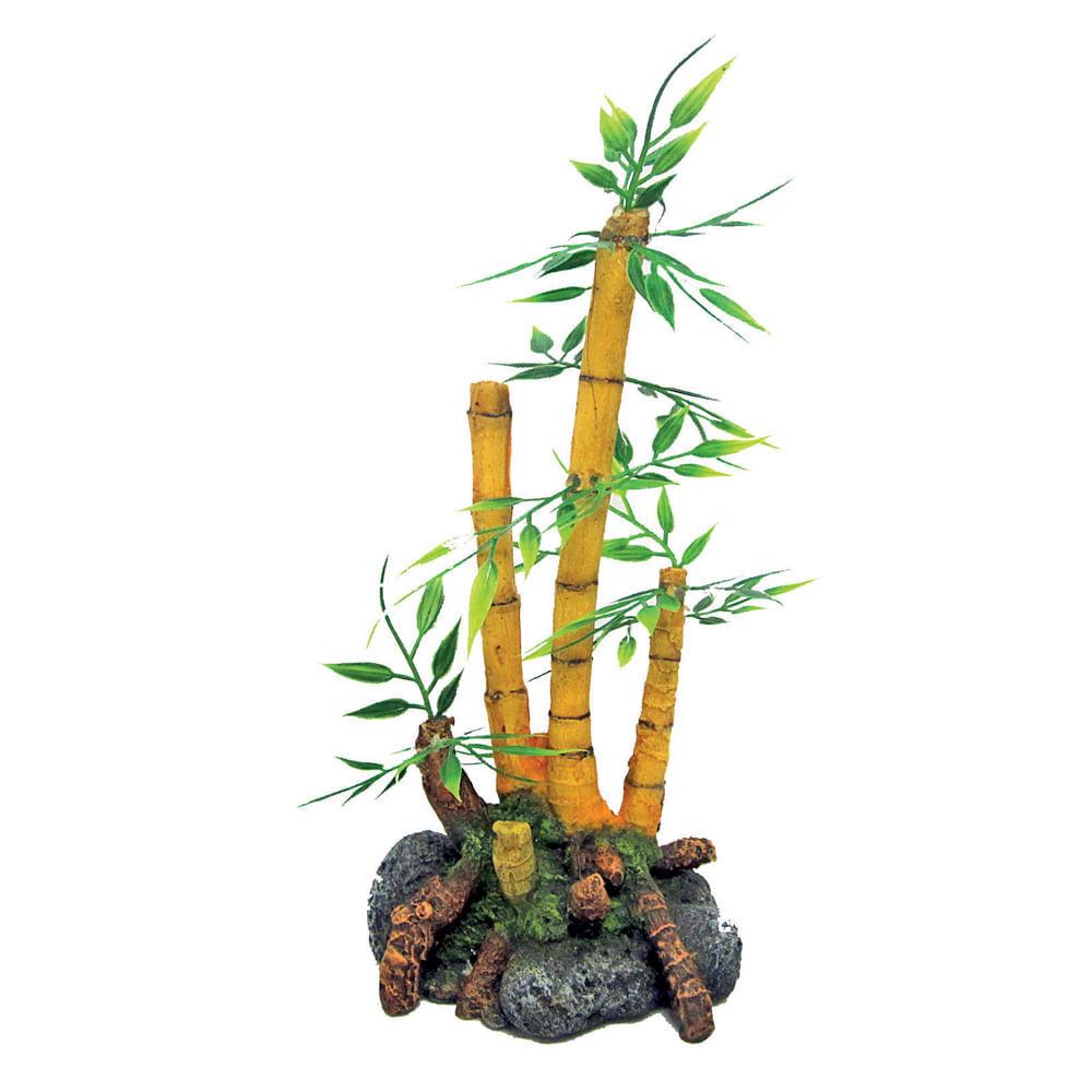 croci japan pianta bamboo 1pz