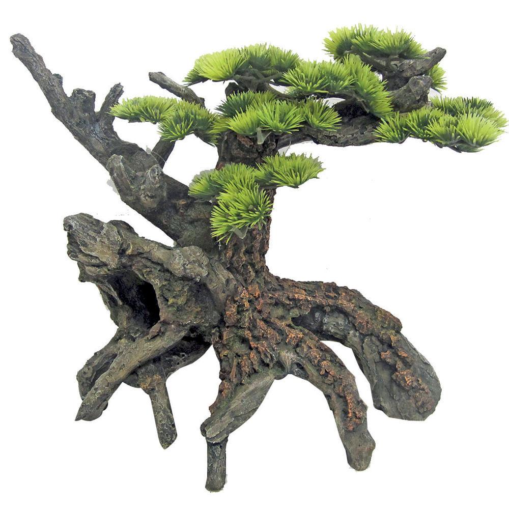 croci japan bonsai 1pz