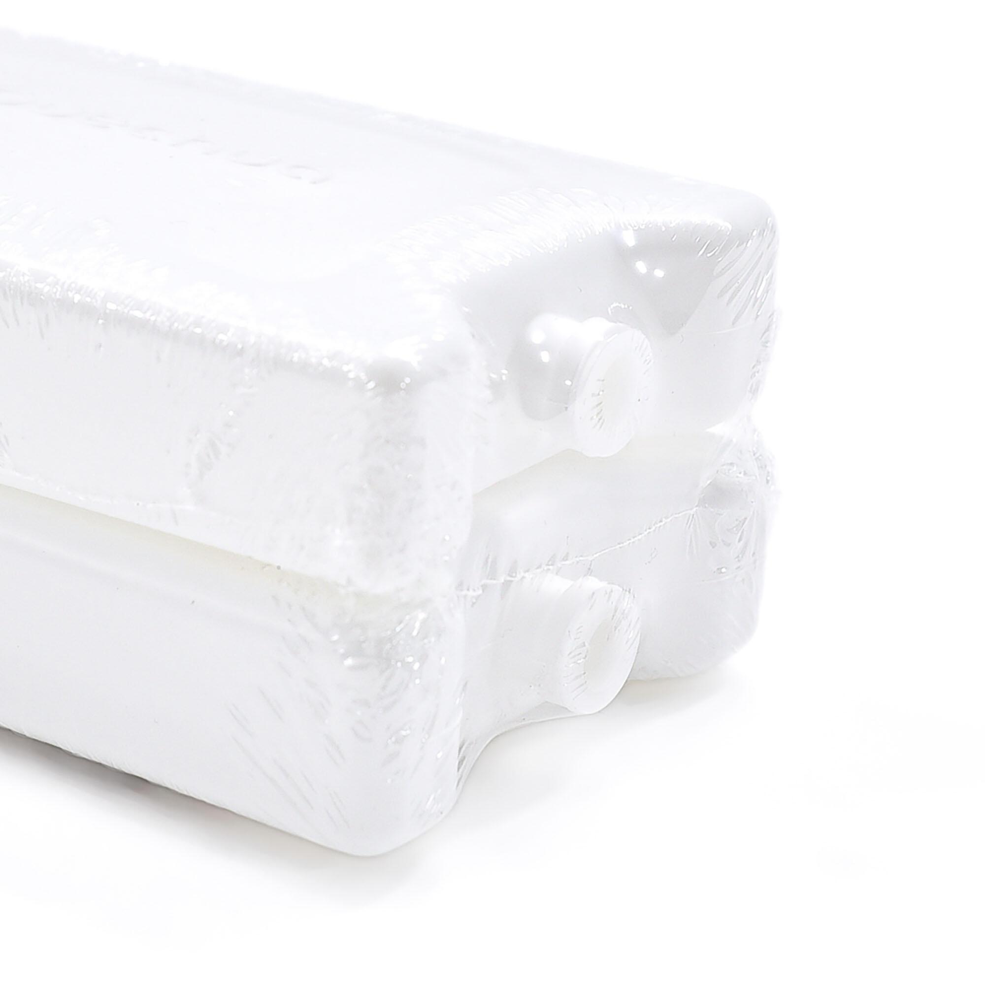 QUECHUA Lotto di 2 ghiaccioli per borsa termica e zaino termico campeggio - 370 grammi