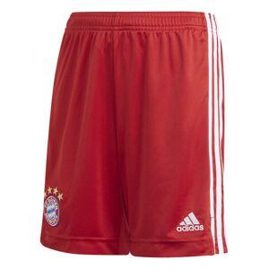 adidas Home FC Bayern München Junior - pantaloni corti calcio - bambino - Red/White