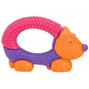 The First Years Bristle Buddy Teether Girls by