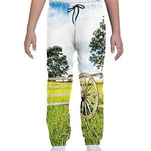 GULTMEE Pantalones de chándal para jóvenes, Frescos Verdes para Plantar prados, para Crecimiento Lento, árboles de Paisaje Rural, S-XL, de colores1, X-Large