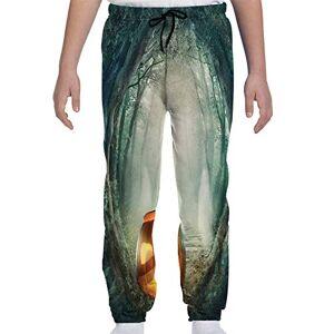 GULTMEE Pantalones de chándal para jóvenes, con temática de película de Terror en la casa abandonada en la zacate pálida, para jardín, Atardecer, Foto S-XL, de colores2, X-Large