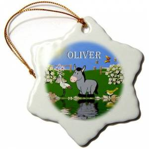 3dRose LLC 3dRose ORN_50120_1 Decorative Donkey and Bird Art Design for Children-Personalized with The Name Oliver-Snowflake Ornament, 3-Inch, Porcelain