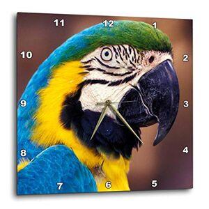 3dRose DPP_83729_1 Reloj de Pared con diseño de pájaro Tropical NA02 DGU0006, Darrell Gulin, 25,4 x 25,4 cm