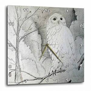 3dRose DPP_13726 Edmond Hogge Jr Owls Búho Relojes de Pared