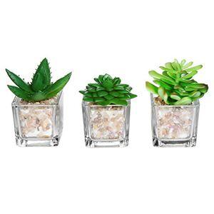 MyGift Cubos de vidrio pequeños, plantas artificiales, decoración para el hogar moderna, macetas, macetas suculentas, juego de 3 ®