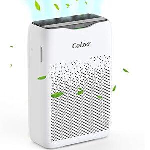 COLZER Purificador de aire con filtro de aire HEPA, purificador de aire para dormitorio, para espacios de hasta 450 pies cuadrados, perfecto para hogar/oficina con filtro (EPI-186)