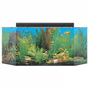 "SeaClear 26 GAL Flat Back Hexagon Acrylic Aquarium Combo Set, 36 by 12 by 16"", Black"