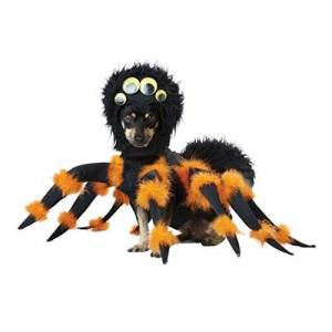 CALIFORNIA COSTUME COLLECTIONS PET20149 Spider Pup Dog Costume, Small