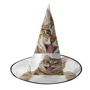 Jnseff Wizards Hat Bengal Cat Looking Over Sign Sombrero de Bruja mágica Decoraciones de Halloween Sombrero de Bruja para decoración de Fiesta Accesorio de Disfraz de Cosplay Navidad Cump