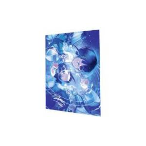 Bandai Namco Entertainment Sword Art Online: Hollow Realization Limited Signed Lithography Print