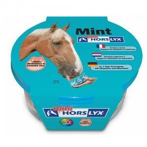Horslyx Mint Mini - 650 g