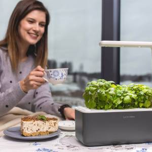 Click & Grow Smart Garden 3 Antraciet (Incl 3 basilicum plantjes)