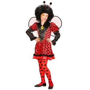 Feestkleding: Lieveheersbeestjes jurkje voor meisjes  - girls