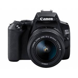 Canon Reflexcamera EOS 250D + 18-55 mm DC