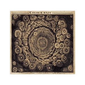 ELEKTROHAS Colour Haze - Colour Haze CD