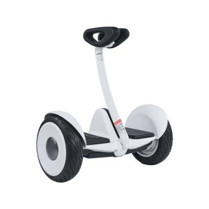 SEGWAY Hoverboard Ninebot S Wit