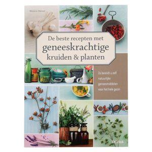 De beste recepten met geneeskrachtige kruiden & planten