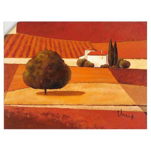 Artland artprint »Mediterrane Kornfelder III«  - 28.99 - rood
