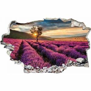 OTTO wandfolie »Lavendel in der Provence«  - 69.99 - paars