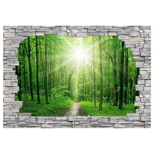 ART fotobehang »Sunny Forest Mauer«  - 113.99 - groen