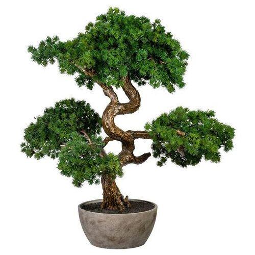 Creativ green kunstbonsai »Bonsai Lärche«  - 207.99 - groen