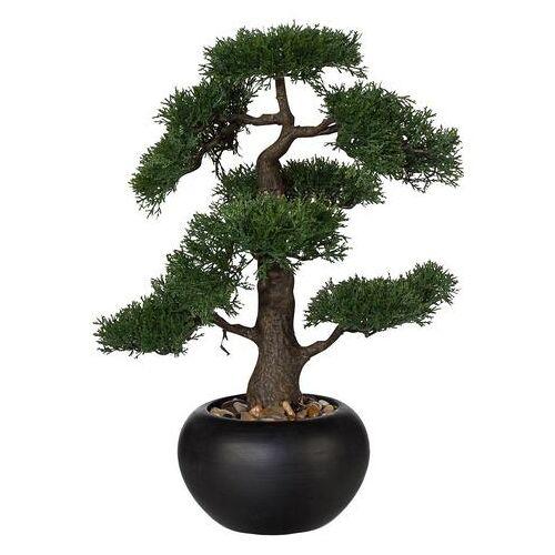 Creativ green kunstbonsai »Bonsai«  - 49.99 - groen - Size: ceder