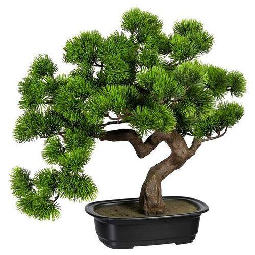 Creativ green kunstbonsai »Bonsai Kiefer«  - 54.99 - groen
