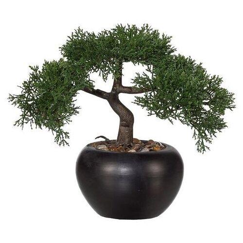 Creativ green kunstbonsai »Bonsai Zeder«  - 19.99 - groen