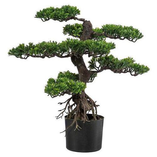 Creativ green kunstbonsai »Bonsai«  - 109.99 - groen