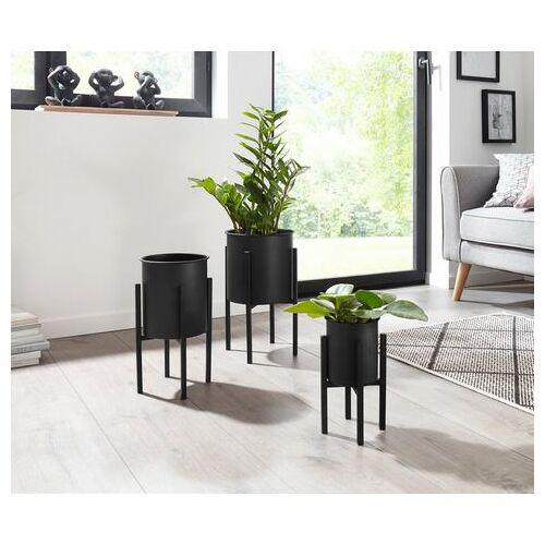 andas bloemenstandaard (set van 3)  - 59.99 - zwart