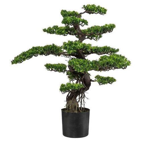 Creativ green kunstbonsai »Bonsai«  - 149.99 - groen