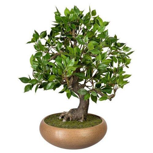 Creativ green kunstbonsai »Bonsai Ficus«  - 121.99 - groen